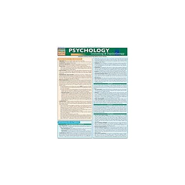 Barcharts Publishing Psychology: Counseling And Psychotherapy Workbook By Lyngzeidetson, Albert, Grade 9 - Grade 12 [eBook]