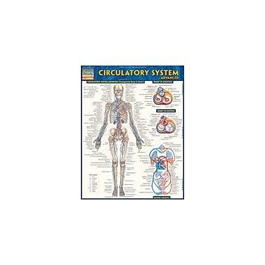 Barcharts Publishing Circulatory System Advanced Workbook By Northeast Editing, Grade 6 - Grade 12 [eBook]