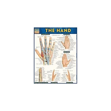 Barcharts Publishing The Hand Workbook By Yablonsky, Ken, Grade 6 - Grade 12 [eBook]
