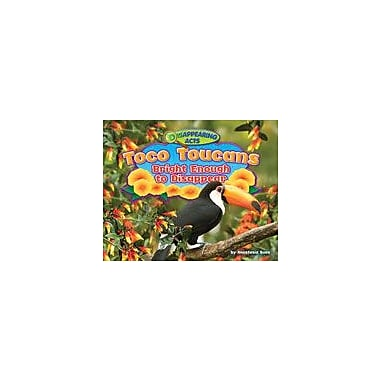 Bearport Publishing Toco Toucans: Bright Enough To Disappear Workbook By Suen, Anastasia, Kindergarten - Grade 3 [eBook]
