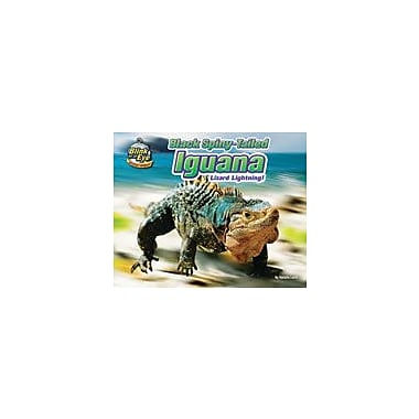 Bearport Publishing Black Spiny-Tailed Iguana: Lizard Lightning! Workbook By Lunis, Natalie, Kindergarten - Grade 3 [eBook]