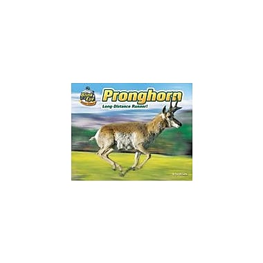 Bearport Publishing Pronghorn: Long-Distance Runner! Workbook By Lunis, Natalie, Kindergarten - Grade 3 [eBook]