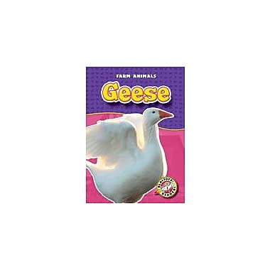 Bellwether Media Inc. Geese Workbook By Hoffart, Jeff; Killoran, Tosca, Kindergarten - Grade 3 [eBook]