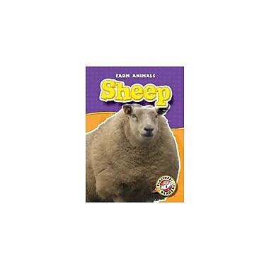 Bellwether Media Inc. Sheep Workbook By Green, Jen, Kindergarten - Grade 3 [eBook]