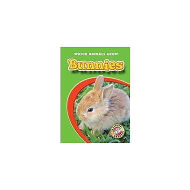 Bellwether Media Inc. Bunnies Workbook By Sewell, James, Kindergarten - Grade 3 [eBook]
