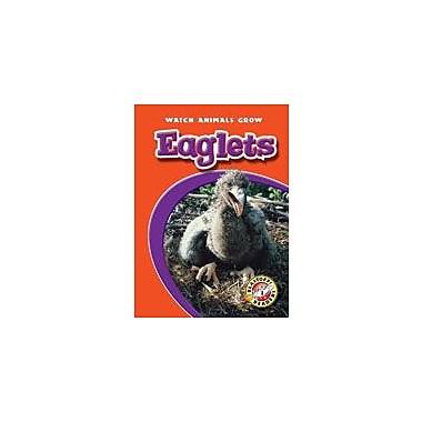 Bellwether Media Inc. Eaglets Workbook By Weltz, Christie, Kindergarten - Grade 3 [eBook]