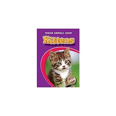 Bellwether Media Inc. Kittens Workbook By Sewell, James, Kindergarten - Grade 3 [eBook]
