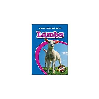 Bellwether Media Inc. Lambs Workbook By Weltz, Christie, Kindergarten - Grade 3 [eBook]