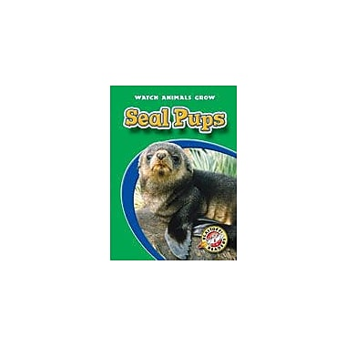 Bellwether Media Inc. Seal Pups Workbook By Sewell, James, Kindergarten - Grade 3 [eBook]