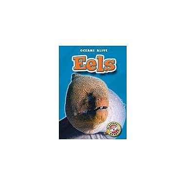 Bellwether Media Inc. Eels Workbook By Sally Derby, Kindergarten - Grade 3 [eBook]