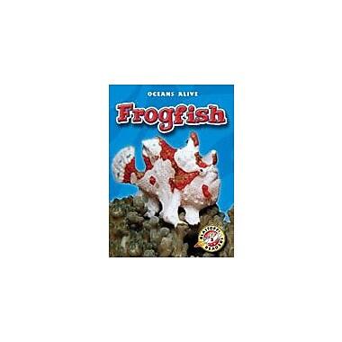 Bellwether Media Inc. Frogfish Workbook By Sewell, James, Kindergarten - Grade 3 [eBook]