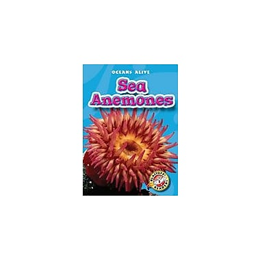 Bellwether Media Inc. Sea Anemones Workbook By Russell, Martin, Kindergarten - Grade 3 [eBook]