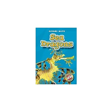 Bellwether Media Inc. Sea Dragons Workbook By Scerbo, Lauren, Kindergarten - Grade 3 [eBook]