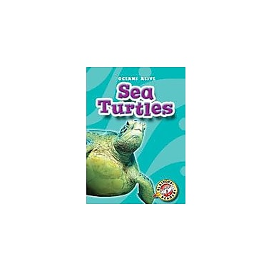 Bellwether Media Inc. Sea Turtles Workbook By Ann Bryant, Ben Redlich, Kindergarten - Grade 3 [eBook]