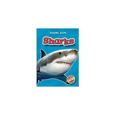 Bellwether Media Inc. Sharks Workbook By Sewell, James, Kindergarten - Grade 3 [eBook]