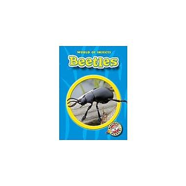 Bellwether Media Inc. Beetles Workbook By Sewell, James, Kindergarten - Grade 3 [eBook]