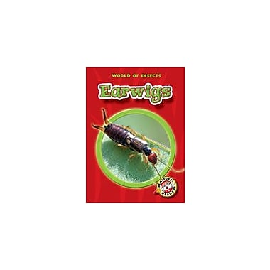 Bellwether Media Inc. Earwigs Workbook By Sewell, James, Kindergarten - Grade 3 [eBook]