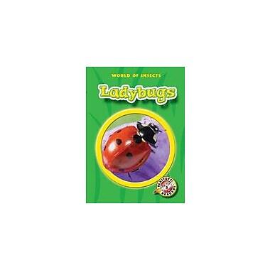 Bellwether Media Inc. Ladybugs Workbook By Russell, Martin, Kindergarten - Grade 3 [eBook]