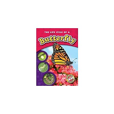 Bellwether Media Inc. The Life Cycle Of A Butterfly Workbook By Sewell, James, Kindergarten - Grade 3 [eBook]