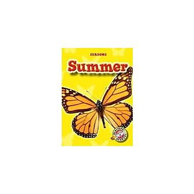 Bellwether Media Inc. Summer Workbook By Ann Bryant, Ben Redlich, Kindergarten - Grade 3 [eBook]