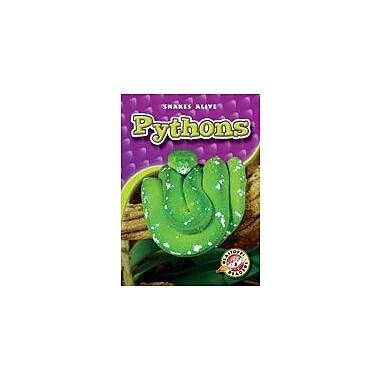 Bellwether Media Inc. Pythons Workbook By Sewell, James, Kindergarten - Grade 3 [eBook]