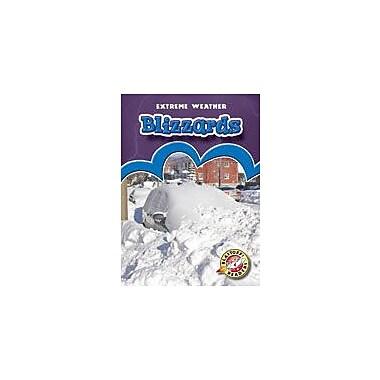 Bellwether Media Inc. Blizzards Workbook By Kaufman, Gabriel, Kindergarten - Grade 3 [eBook]