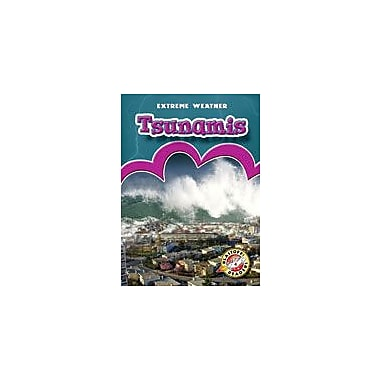 Bellwether Media Inc. Tsunamis Workbook By Weltz, Christie, Kindergarten - Grade 3 [eBook]