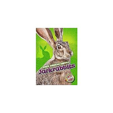 Bellwether Media Inc. Jackrabbits Workbook By Christina Leaf, Kindergarten - Grade 3 [eBook]