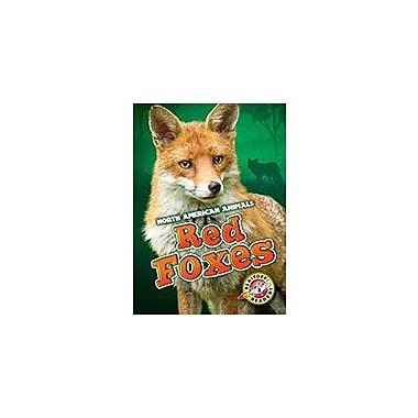 Bellwether Media Inc. Red Foxes Workbook By Megan Borgert-Spaniol, Kindergarten - Grade 3 [eBook]