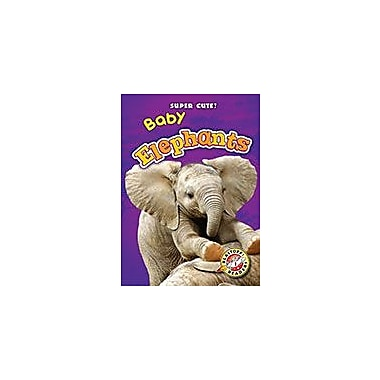 Bellwether Media Inc. Baby Elephants Workbook By Christina Leaf, Kindergarten - Grade 3 [eBook]