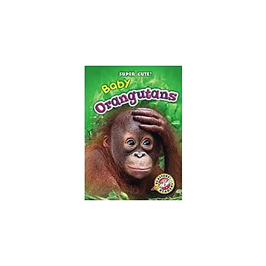 Bellwether Media Inc. Baby Orangutans Workbook By Christina Leaf, Kindergarten - Grade 3 [eBook]