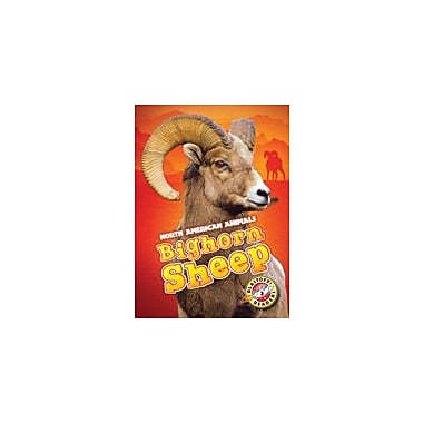 Bellwether Media Inc. Bighorn Sheep Workbook By Megan Borgert-Spaniol, Kindergarten - Grade 3 [eBook]