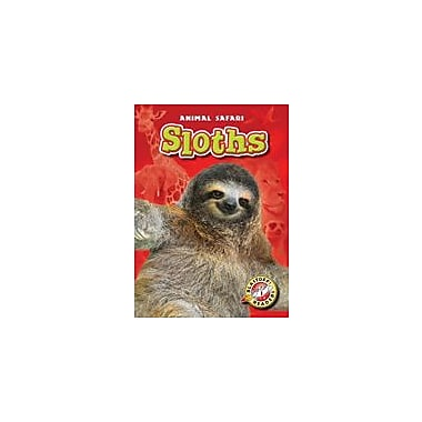 Bellwether Media Inc. Sloths Workbook By Megan Borgert-Spaniol, Kindergarten - Grade 3 [eBook]