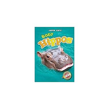 Bellwether Media Inc. Baby Hippos Workbook By Megan Borgert-Spaniol, Kindergarten - Grade 3 [eBook]