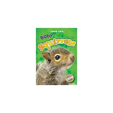 Bellwether Media Inc. Baby Squirrels Workbook By Megan Borgert-Spaniol, Kindergarten - Grade 3 [eBook]