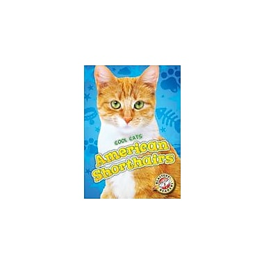 Bellwether Media Inc. American Shorthairs Workbook By Christina Leaf, Kindergarten - Grade 3 [eBook]
