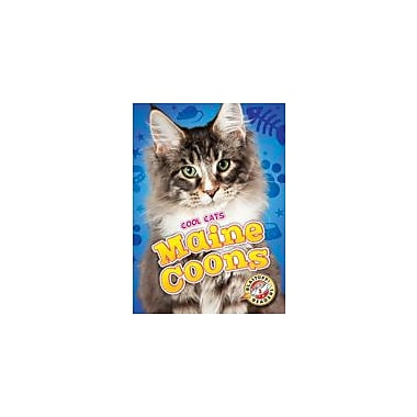 Bellwether Media Inc. Maine Coons Workbook By Rebecca Felix, Kindergarten - Grade 3 [eBook]