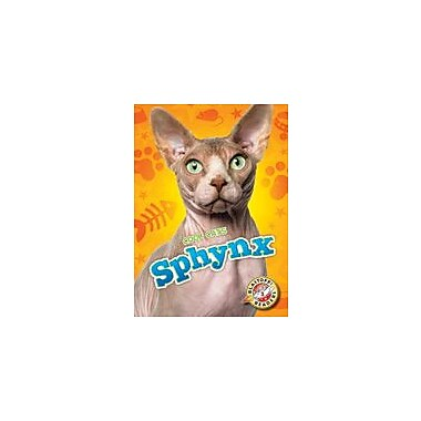 Bellwether Media Inc. Sphynx Workbook By Rebecca Felix, Kindergarten - Grade 3 [eBook]