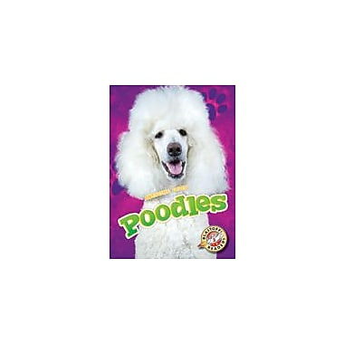 Bellwether Media Inc. Poodles Workbook By Breanna Berry, Kindergarten - Grade 3 [eBook]