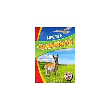 Bellwether Media Inc. Life In A Grassland Workbook By Laura Hamilton Waxman, Kindergarten - Grade 3 [eBook]