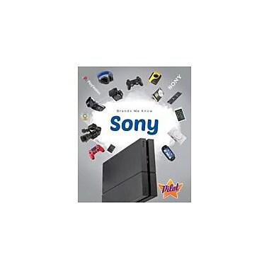 Bellwether Media Inc. Sony Workbook By Sara Green, Grade 3 - Grade 8 [eBook]