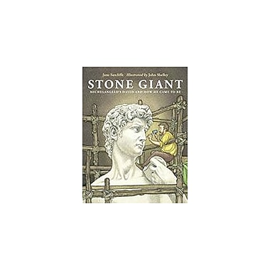Charlesbridge Publishing Stone Giant Workbook By Sutcliffe, Jane, Grade 6 - Grade 9 [eBook]