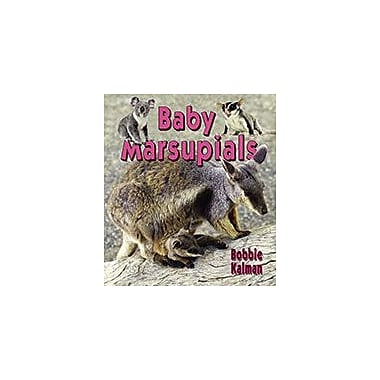 Crabtree Publishing Company Baby Marsupials Workbook By Bobbie Kalman, Kindergarten - Grade 3 [eBook]