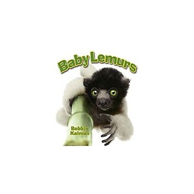 Crabtree Publishing Company Baby Lemurs Workbook By Kalman, Bobbie, Kindergarten - Grade 3 [eBook]