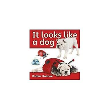 Crabtree Publishing Company It Looks Like A Dog Workbook By Kalman, Bobbie, Kindergarten - Grade 2 [eBook]