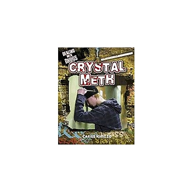 Crabtree Publishing Company Crystal Meth Workbook By Carrie L. Iorizzo, Grade 5 - Grade 8 [eBook]