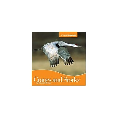 Cavendish Square Publishing Cranes And Storks Workbook By Otfinoski, Steven, Grade 3 - Grade 6 [eBook]