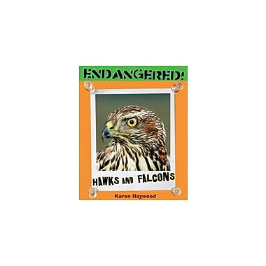 Cavendish Square Publishing Hawks And Falcons Workbook By Haywood, Karen, Grade 3 - Grade 5 [eBook]