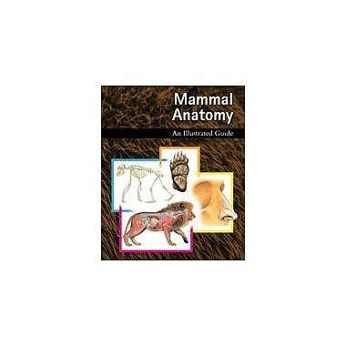 Cavendish Square Publishing Mammal Anatomy: An Illustrated Guide Workbook, Grade 5 - Grade 12 [eBook]