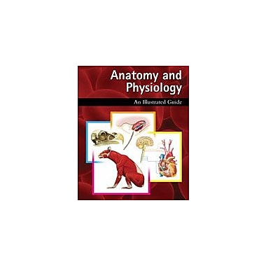 Cavendish Square Publishing Anatomy And Physiology: An Illustrated Guide Workbook, Grade 5 - Grade 12 [eBook]